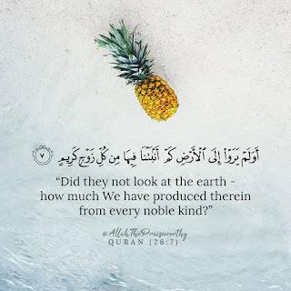 Quran Ayat  wallpapers in english download