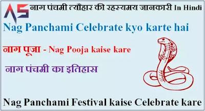 Nag Panchami Festival - नाग पंचमी त्यौहार की रहस्यमय जानकारी In Hindi. Nag Pooja kaise kare