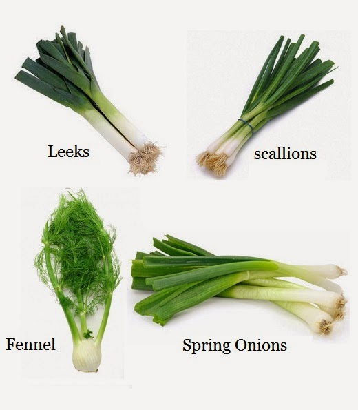 How To Re Grow Leeks Scallions Spring Onions And Fennel