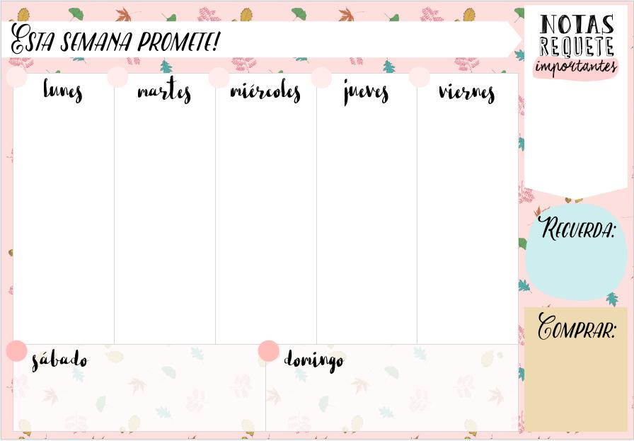 Calendario Semanal.Bonjour Magique Regalazo Por Mi Cumpleanos Planificador Semanal