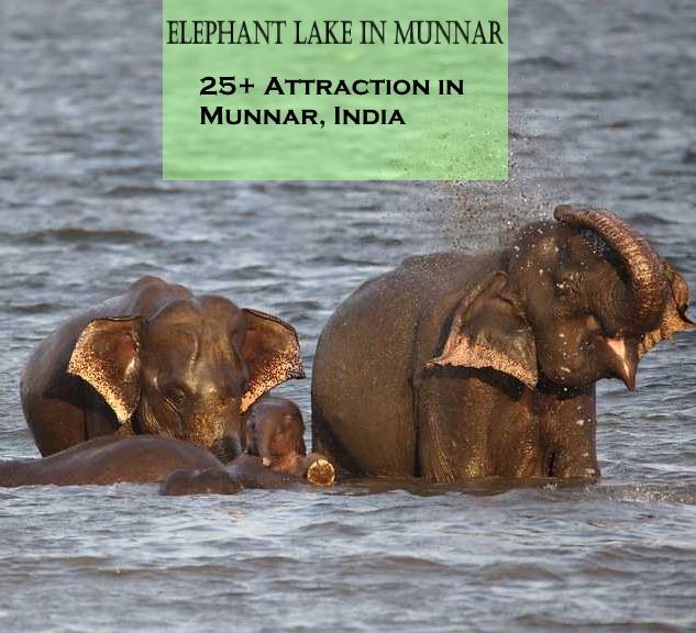 Munnar Attractions : Elephant Lake Munnar