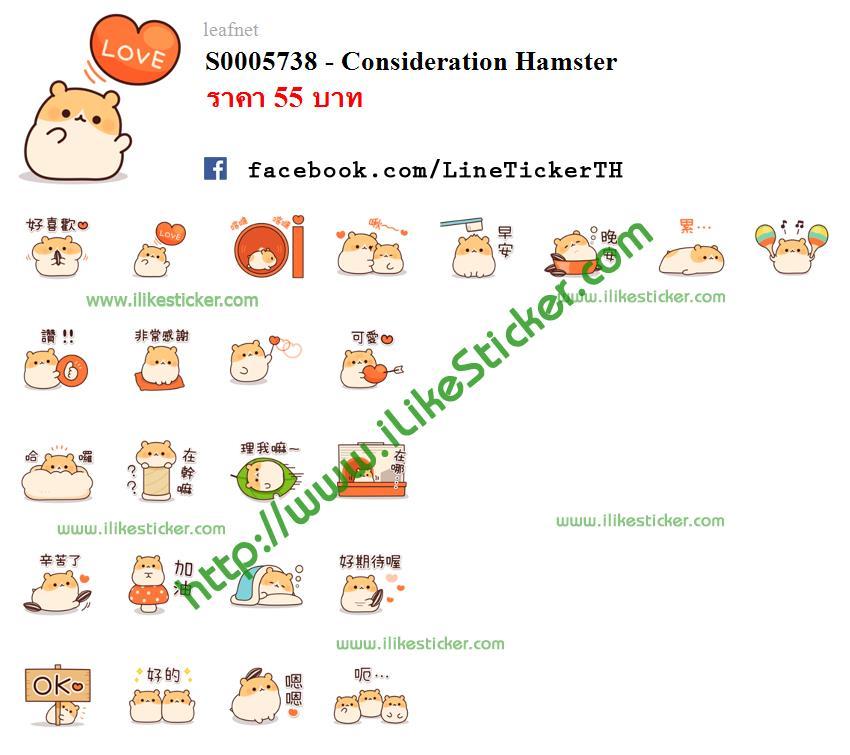 Consideration Hamster
