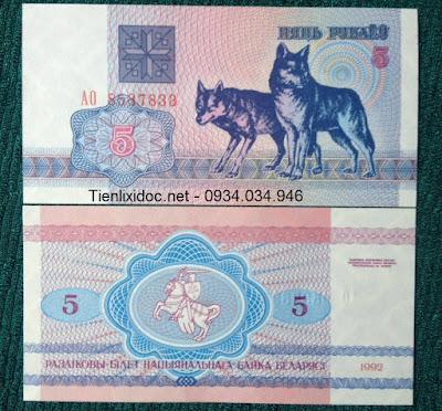 Tiền Hình Con Chó