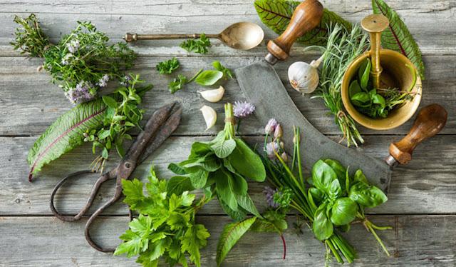 علاج التهاب المعدة بالاعشاب وبوصفات طبيعية سريعة المفعول