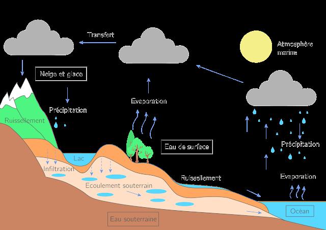 L'eau dans notre environnement 1er Année