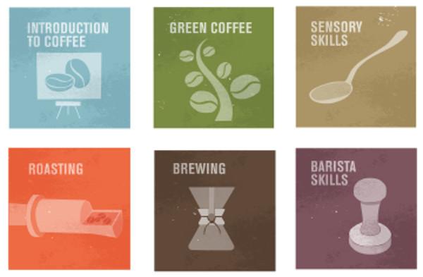 SCAE 咖啡烘焙訓練認證課程(Roasting)   COFFEE REMUS 旅沐豆行 自家焙煎咖啡 手工烘焙點心
