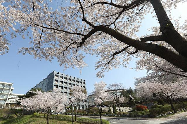 Trường đại học Myongji Hàn Quốc