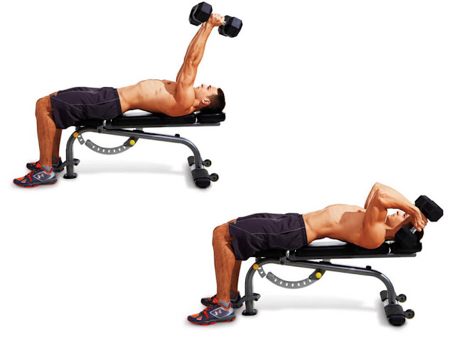 exercises with dumbbells for arms