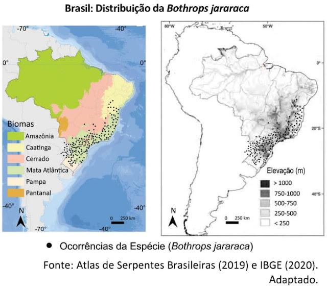 BRASIL: DISTRIBUIÇÃO DA BOTHROPS JARARACA