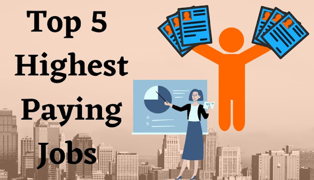 Top 5 highest paying jobs in india for fresher in hindi,best career options for students in hindi