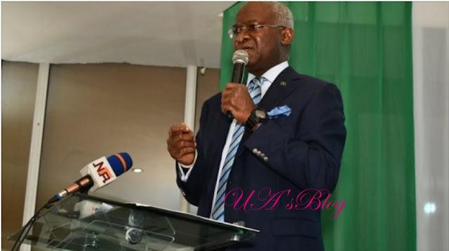 We have berries, 'ogogoro' to produce hand sanitisers, says Fashola