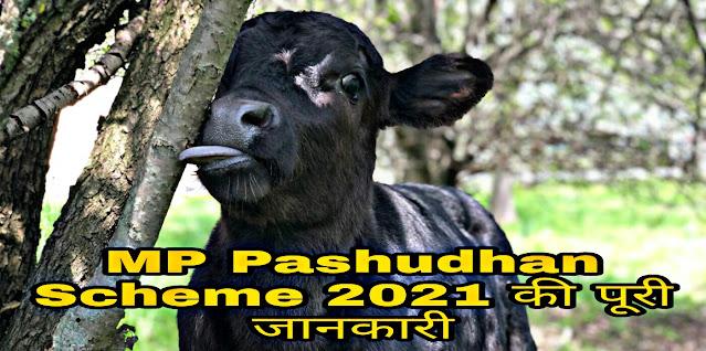 मध्य प्रदेश पशुधन बीमा योजना 2021 l Madhya Pradesh Pashudhan Insurance Scheme 2021 l MP Pashudhan Beema Yojana 2021.