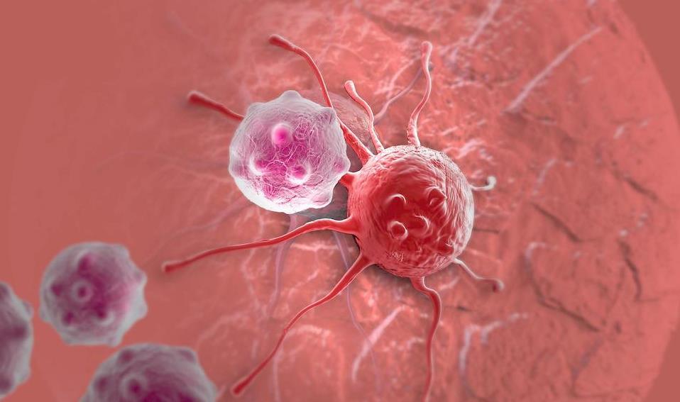 Makanan Penyebab Kanker Serviks yang Perlu Anda Hindari