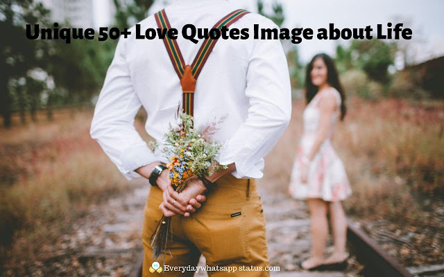 Unique 50+ Love Quotes Image about Life   Everyday whatsapp Status   Everyday Status