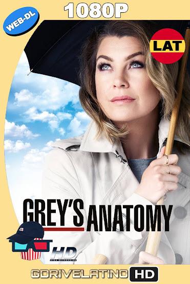 Grey's Anatomy (2015) Temporada 01 al 15 NF WEB-DL 1080p Latino-Ingles MKV