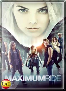 Maximum Ride: Proyecto Ángel (2016) DVDRIP LATINO