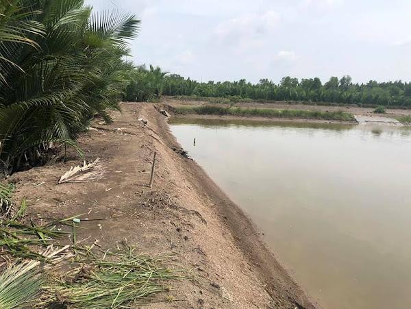 Bán 5533m2 đất nông nghiệp, đường Trần Quang Nhơn, xã Bình Khánh
