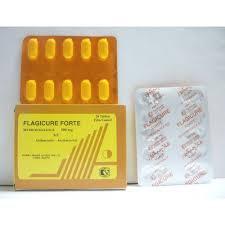 سعر ودواعي استعمال اقراص فلاجيكيور Flagicure للبكتيريا