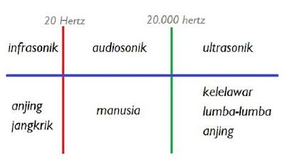 Pengertian Bunyi Audiosonik, Infrasonik dan Ultrasonik serta Manfaat Bunyi Ultrasonik dalam Kehidupan Sehari-hari