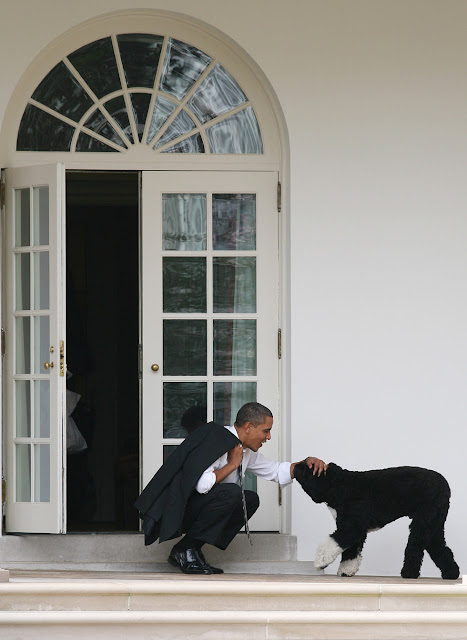 President Barack Obama with his dog BO