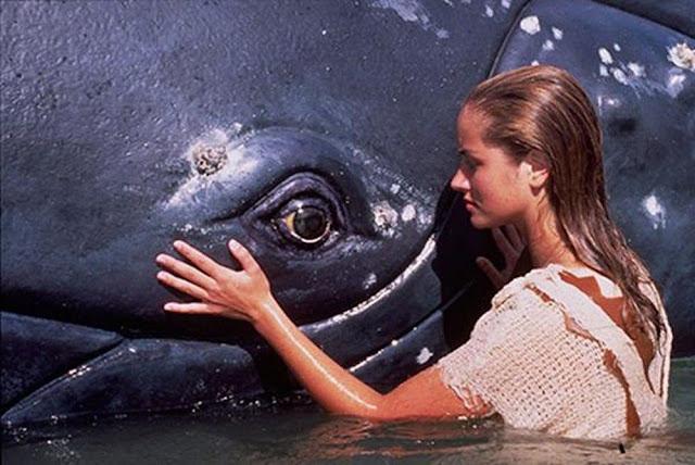 Cô gái Đại Dương 1 - Ocean Girl 1 (1994) 1