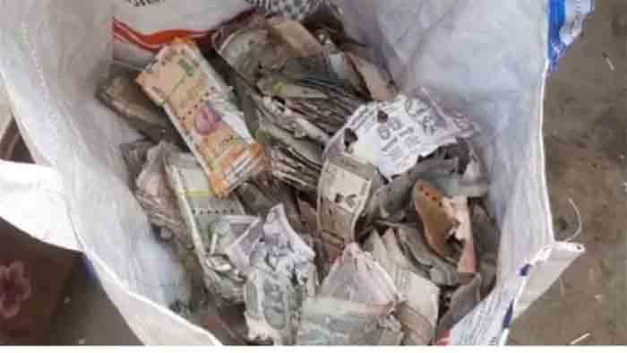 Bangalore, News, National, Police, Bank, Andhra trader hides his life's savings in trunk, termites finish off Rs 5 lakh