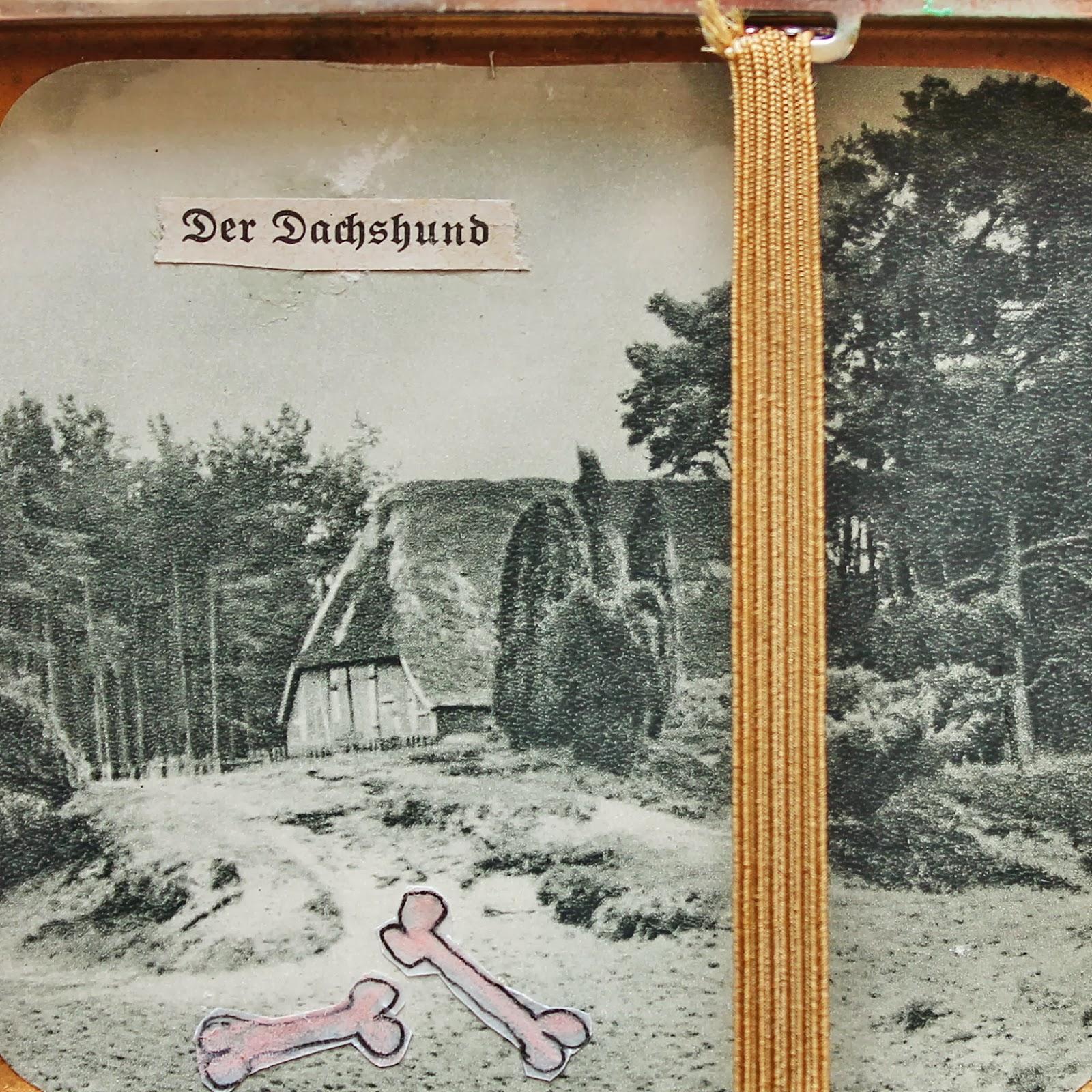 Wunderkammer Nr 4, Der Dachshund (heide Kuriosa I)