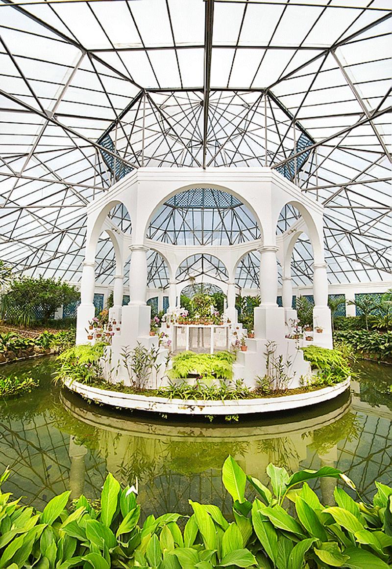 Orquidario Jardin Botánico Río de Janeiro