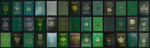 Single electronic African Passport