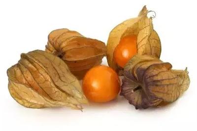 Makoy - rasbhari fruit in english