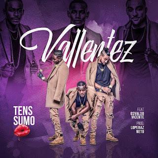 Vallentez – Tens Sumo (feat. Osvaldo Vicente) ( 2019 ) [DOWNLOAD]