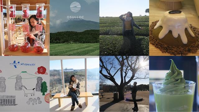 O'sulloc and Innisfree Jeju