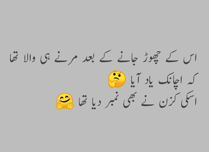 Funny Lateefay In Urdu - Urdu Lateefay
