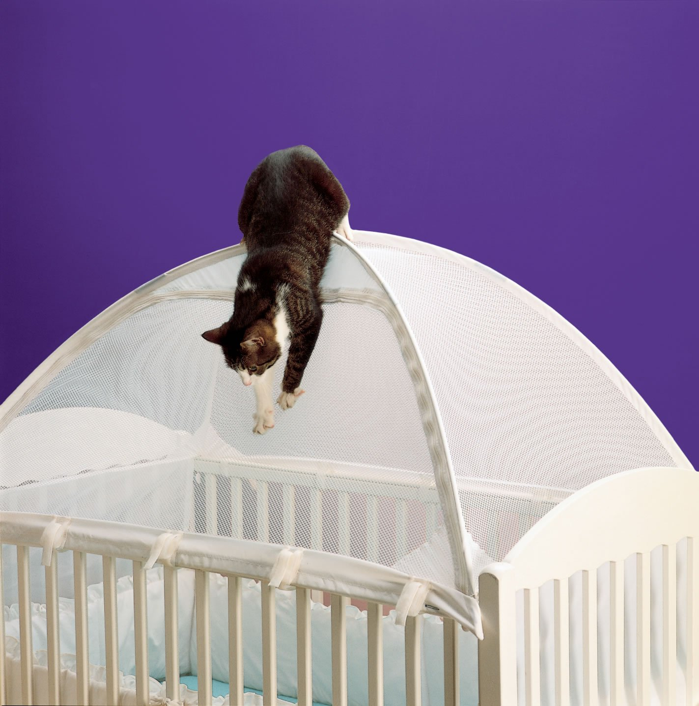 Net To Keep Cats Out Of Crib