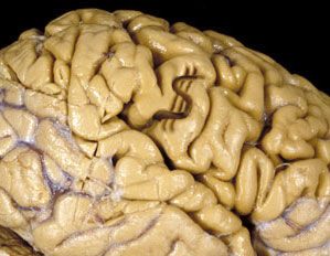 How Human Brain will get Damaged?