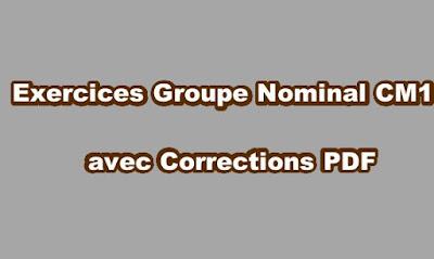 Exercice Groupe Nominal CM1 avec Correction PDF - exercours