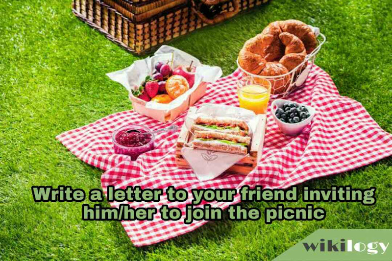 Write a letter to your friend inviting him to join the picnic