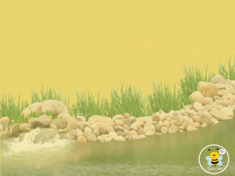নদ-নদী
