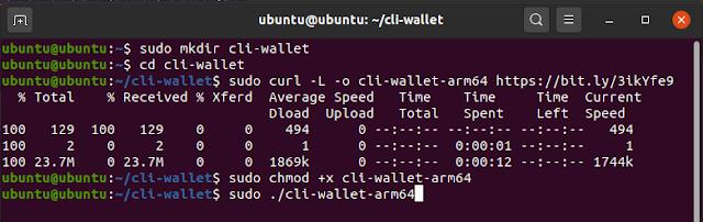 cli-walletm1.png
