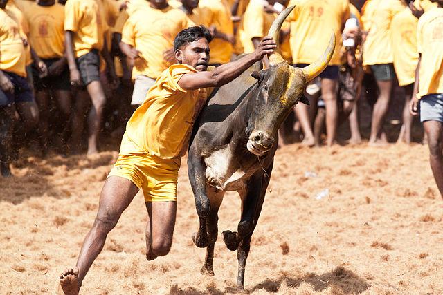 Strange religious festivals of India