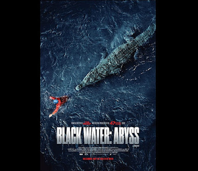 The Black Water: Abyss Movie Synopsis