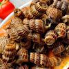5 Kuliner Unik dari Berbagai Daerah di Nusantara yang Cuma Muncul Ketika Ramadan