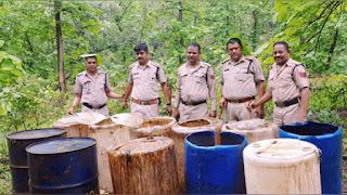 आबकारी विभाग ने 3 लाख का 6 हज़ार किलो महुआ लहान किया नष्ट