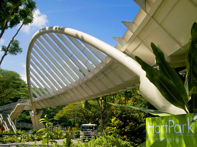 Singapore Overhead Pedestrian Bridges