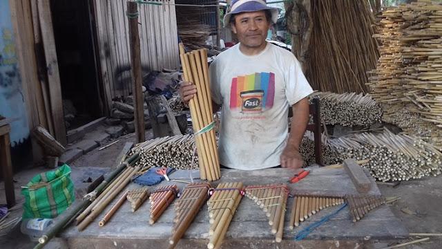 Etnobotánica, caracterización morfológica y distribución ecológica de especies de bambú en la región Selva Central del Perú