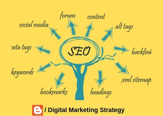 What Skills are needed for SEO?