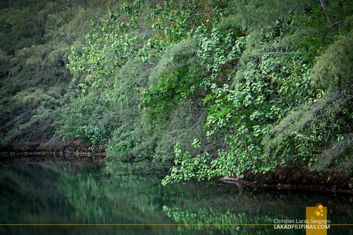 Koh Chang Thailand River