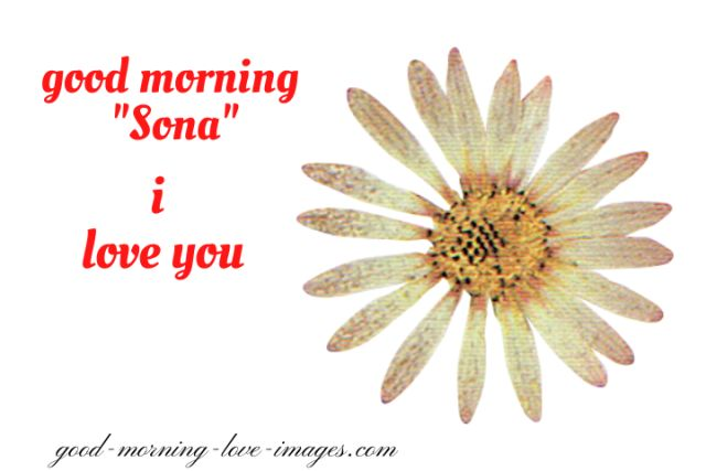 good morning sona I love you beautiful pictures