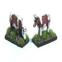 LVS1 Cows