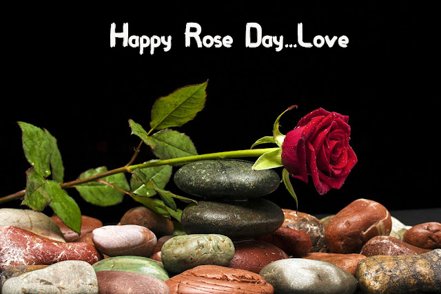 Rose Day image for Boyfriend